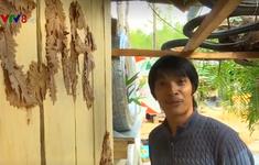 Quán cà phê đổi rác lấy đồ uống tại Campuchia