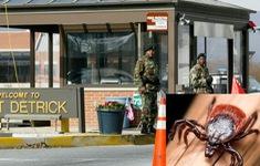 Mỹ điều tra vũ khí côn trùng làm bùng phát dịch bệnh