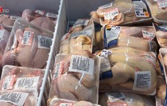 Thịt gà giá rẻ ồ ạt vào Việt Nam