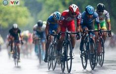 Ngày mai (15/7) sẽ diễn ra Lễ công bố Giải đua xe đạp VTV Cúp Tôn Hoa Sen 2020