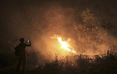 Indonesia xử lý thích đáng nghi phạm gây cháy rừng