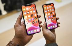 Nếu làm vỡ màn hình iPhone 11 Pro Max, bạn đã vô tình đánh mất cả một gia tài