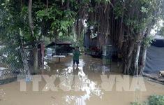 Thiệt hại hàng trăm tấn cá do thủy điện xả lũ tại Đồng Nai