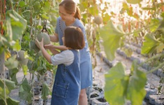 Kích thích sáng tạo và tình yêu thiên nhiên của trẻ em trong không gian xanh