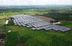 Lúng túng trong quản lý điện mặt trời trên đất nông nghiệp