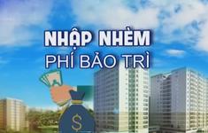 """Chủ đầu tư """"om"""" quỹ bảo trì chung cư: Những """"con voi chui lọt lỗ kim""""!"""