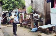 Gia tăng số ca mắc sốt xuất huyết tại Đồng Nai