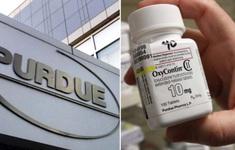 Purdue Pharma thừa nhận gây nên khủng hoảng thuốc giảm đau ở Mỹ