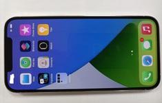 iPhone 12 Pro Max bất ngờ lộ diện tại Việt Nam trước ngày lên kệ