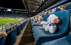 15.000 gấu bông xuất hiện trên khán đài CLB Heerenveen