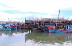 Quảng Nam chủ động triển khai ứng phó bão số 9