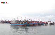 Lý Sơn: Kêu gọi tàu thuyền vào nơi tránh trú bão an toàn