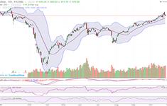 VN-Index giảm mạnh nhất trong vòng 3 tháng, thanh khoản tăng mạnh