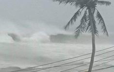 Quảng Nam vẫn còn 100 ngư dân không chịu vào bờ tránh trú bão