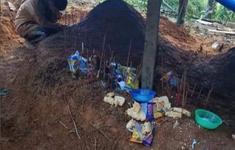 Về làng tìm cha mẹ, nữ sinh Trà Leng gục khóc bên hai nấm mộ