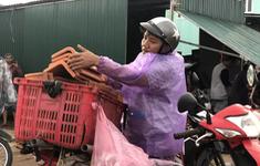 Sau bão, hàng ngàn người Quảng Ngãi chen lấn đi mua ngói