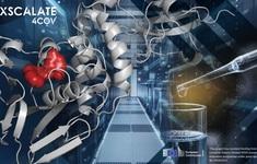 Châu Âu thử nghiệm siêu máy tính tìm kiếm thuốc điều trị COVID-19