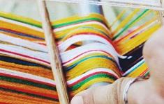 """""""Xanh hoá"""" ngành dệt may bằng nhuộm tự nhiên?"""