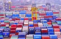 """Tham gia nhiều FTA: Việt Nam có lo hiệu ứng """"tô mì""""?"""