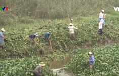 Quảng Nam chống hạn mặn, tiết kiệm nước tưới
