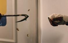 """Siêu phẩm kinh dị """"Candyman"""" của Jordan Peele chính thức tung trailer mới  vô cùng ám ảnh"""
