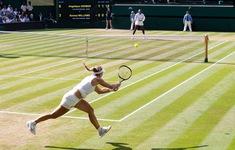 WTA mong muốn một mùa giải trọn vẹn trên mặt sân cỏ