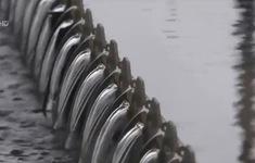 Khai thác nước bền vững cùng biến đổi khí hậu