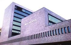 Europol cảnh báo gia tăng tội phạm mùa dịch COVID-19