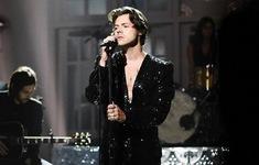 Harry Styles: Chưa bao giờ tôi được nghỉ ngơi nhiều như bây giờ