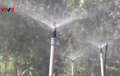 Tiết kiệm nước giải pháp chống hạn