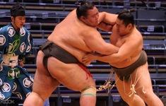 Các giải đấu Sumo tại Nhật Bản có thể bị hủy do dịch COVID-19