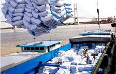 Kiến nghị dừng xuất khẩu gạo cấp thấp để thực hiện dự trữ quốc gia