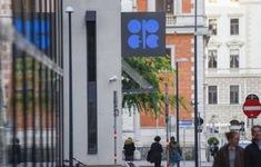 OPEC+ có thể cắt giảm mạnh sản lượng