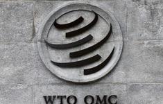 WTO cảnh báo thương mại toàn cầu giảm 1/3 do dịch COVID-19