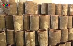 Quảng Ngãi: Dừng dự án phát triển vùng nguyên liệu quế