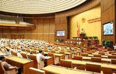 """Cấm hay không cấm kinh doanh dịch vụ đòi nợ làm """"nóng"""" nghị trường Quốc hội"""