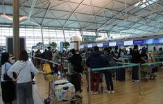 Đưa gần 340 công dân Việt Nam từ Hàn Quốc về nước
