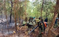 Rừng thông tại Diễn Châu lại rực lửa giữa cao điểm nắng nóng