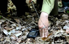 12,3 triệu bẫy dây đang đe dọa động vật hoang dã tại Campuchia, Lào, Việt Nam