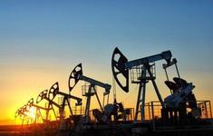 Giá dầu tăng hơn 2% khi dự trữ dầu thô của Mỹ tiếp tục giảm