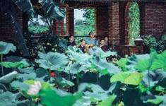 Hải Phòng đầy chất thơ trong MV của nhạc sĩ Xuân Bình