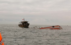 Chìm tàu, 5 ngư dân được cứu nạn kịp thời