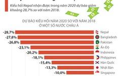 [INFOGRAPHIC] COVID-19 khiến lượng kiều hối chảy về châu Á giảm mạnh
