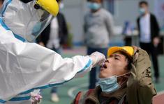 WHO trao đổi với các nhà khoa học Trung Quốc về nguồn gốc COVID-19
