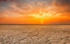 Số người tử vong tăng cao do nhiệt độ Trái đất tăng
