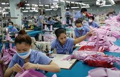 Việt Nam chủ động đáp ứng cam kết và thực thi EVFTA