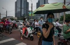 Thêm ca dịch hạch tử vong, thành phố Trung Quốc phát cảnh báo hết năm