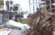 Huế khắc phục thiệt hại ban đầu do bão