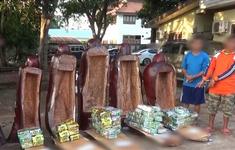 Giấu hơn 230kg ma túy giấu trong tượng gỗ