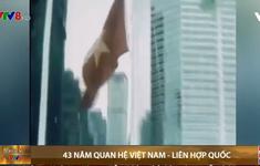 43 năm quan hệ Việt Nam - Liên Hợp Quốc